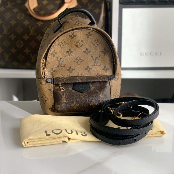 Louis Vuitton Monogram Reverse Palm Springs Mini