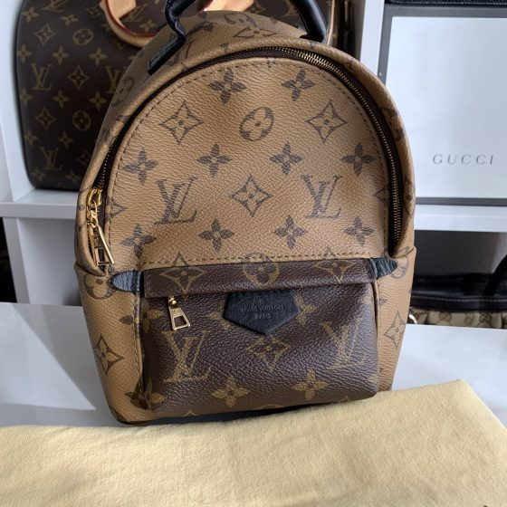 Louis Vuitton Monogram Reverse Palm Springs Mini