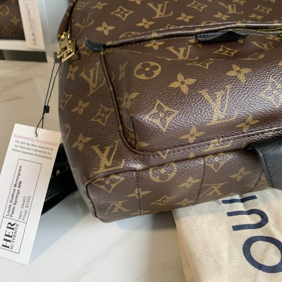 Louis Vuitton Monogram Palm Springs Backpack MM