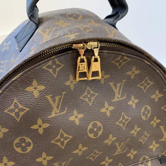 Louis Vuitton Monogram Palm Springs Backpack MM